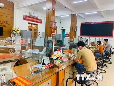 COVID-19: Agribank cho khách hàng vay ưu đãi 100.000 tỷ đồng | Tài chính | Vietnam+ (VietnamPlus) - quất cảnh