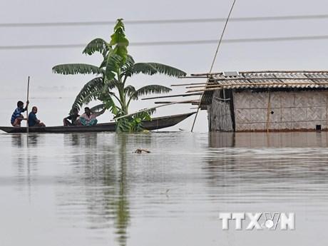Gần 4 triệu người tại Ấn Độ và Nepal phải sơ tán khẩn cấp do lũ lụt | Môi trường | Vietnam+ (VietnamPlus)