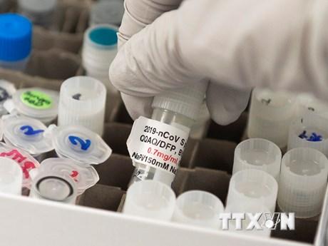 Hãng dược Endo ''''bắt tay'''' với Novavax sản xuất vắcxin ngừa COVID-19