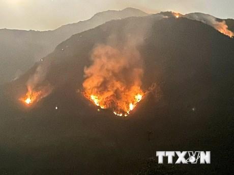 Lai Châu: Người dân đốt cây làm nương, gần 1.000 người chữa cháy rừng