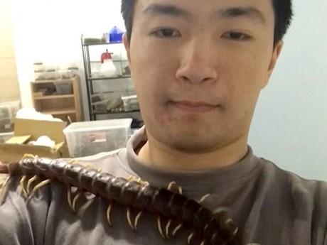 Rợn tóc gáy trước cảnh nam sinh viên sống cùng rết độc dài 40cm