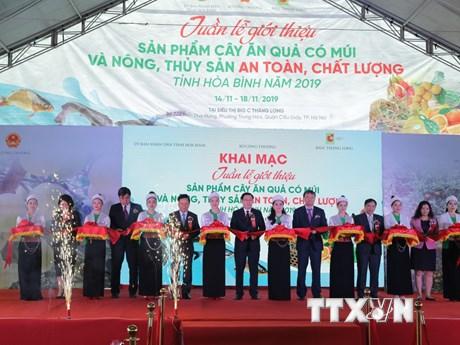 Tuần lễ giới thiệu cây ăn quả có múi, nông sản Hòa Bình tại Hà Nội | Thị trường | Vietnam+ (VietnamPlus)