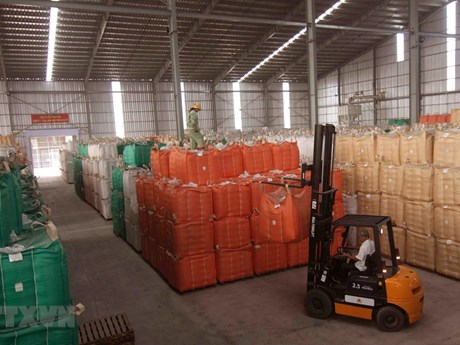 Xây dựng thương hiệu lúa gạo Việt Nam: Tăng giá trị cho hạt gạo