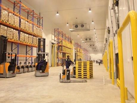 Cần có chiến lược bài bản phát triển nguồn nhân lực logistics