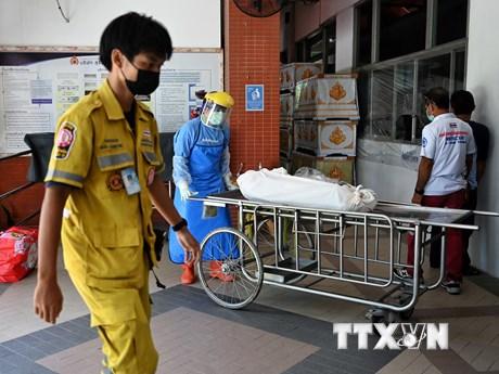 Thế giới đã ghi nhận trên 4,2 triệu ca tử vong do dịch COVID-19