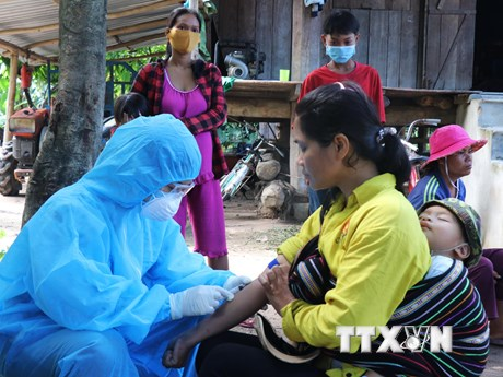 4,7 triệu người ở Tây Nguyên sẽ được tiêm vắcxin phòng bệnh bạch hầu | Y tế | Vietnam+ (VietnamPlus)