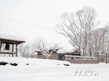 Ngắm ngôi làng lịch sử Hokkaido chìm trong tuyết trắng