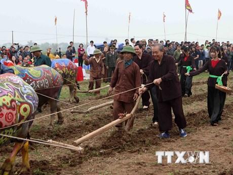 Phó Thủ tướng xuống đồng, cày ruộng đầu năm tại lễ hội Tịch điền