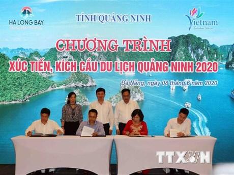 Liên kết kích cầu du lịch hai địa phương Quảng Ninh và Đà Nẵng | Du lịch | Vietnam+ (VietnamPlus)