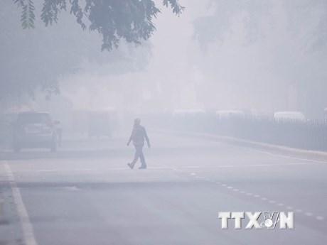 Thủ đô Ấn Độ đóng cửa trường học do ô nhiễm không khí nghiêm trọng