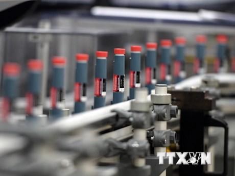 Tìm ra hướng điều trị mới cho các bệnh nhân tiểu đường   Sức khỏe   Vietnam+ (VietnamPlus)