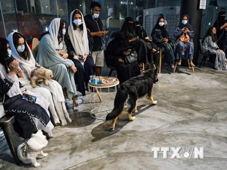 Kỳ lạ quán càphê đầu tiên dành cho chó tại Saudi Arabia