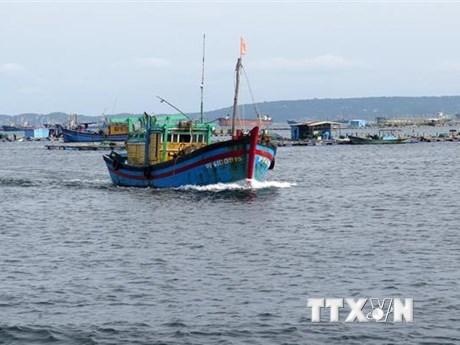 Bão số 9: Điều động 3 tàu kiểm ngư tìm kiếm ngư dân Bình Định mất tích
