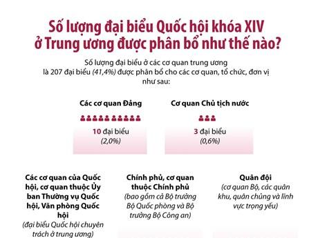 Số lượng ĐBQH khóa XIV ở Trung ương được phân bổ như thế nào?