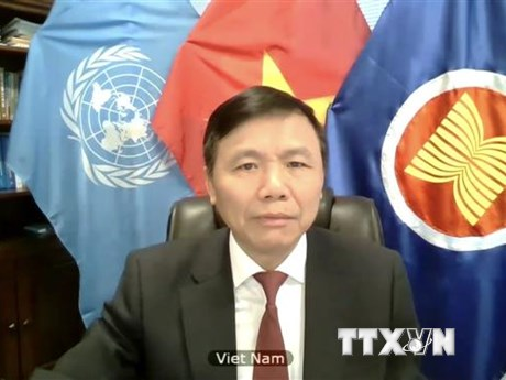 Việt Nam kêu gọi tăng cường bảo vệ thường dân tại CHDC Congo