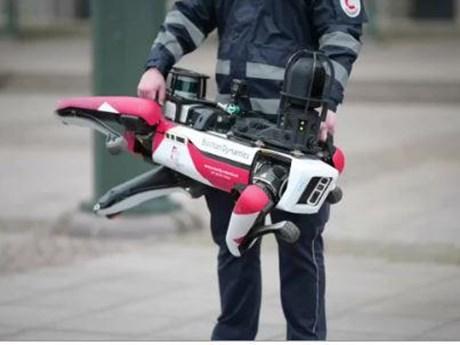 Chó robot gây sốt với kỹ năng tuần tra trên đường phố Đức