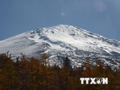[Photo] Du khách chìm đắm trong mùa lá vàng trên núi Phú Sĩ