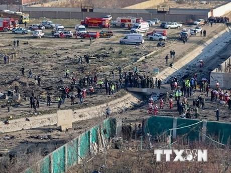 Iran không muốn các nước chính trị hóa vụ rơi máy bay Ukraine | Trung Đông | Vietnam+ (VietnamPlus)