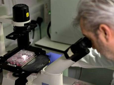 Australia dành hơn 1,3 triệu USD phát triển vắcxin phòng ngừa COVID-19