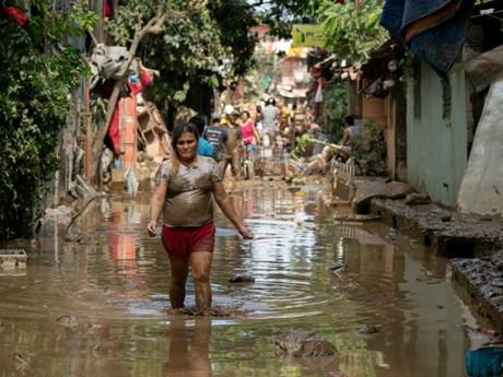 Hơn 5.000 người Philippines phải sơ tán do bão Dujuan