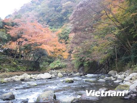 [Photo] Nhật Bản: Đến Hakone tắm nước nóng, thưởng ngoạn thiên nhiên