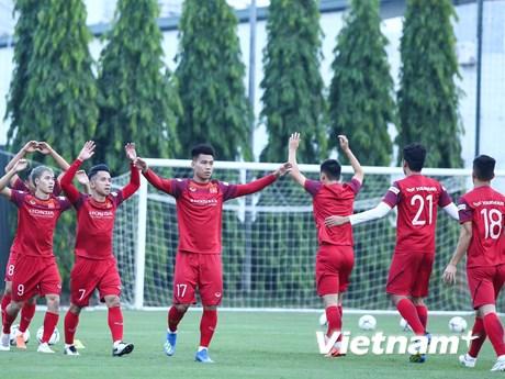Lịch vòng loại World Cup 2022 thay đổi, tuyển Việt Nam hoãn tập trung
