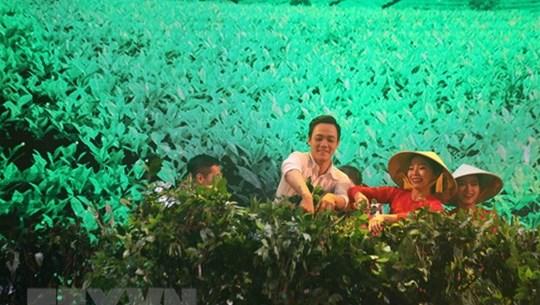 Nhiều hoạt động đa dạng tại Festival hoa Đà Lạt lần thứ tám