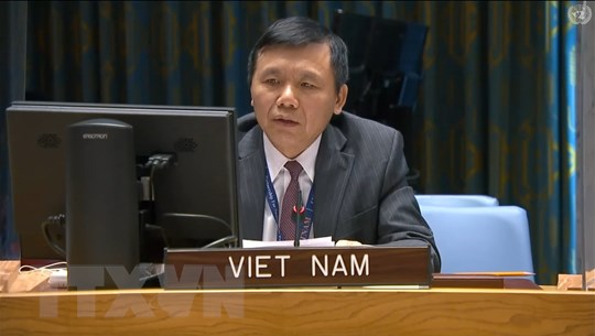 Việt Nam kêu gọi Mali tăng cường các nỗ lực hòa hợp dân tộc