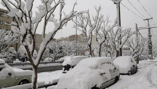 Bão tuyết tồi tệ nhất xảy ra tại Ireland trong gần 4 thập kỷ