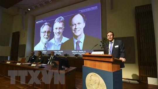 Nobel Y học 2019 vinh danh nghiên cứu điều trị bệnh thiếu máu, ung thư