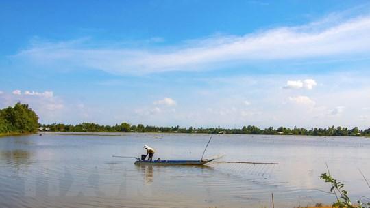 [Photo] Mùa lũ ở Hậu Giang: Những cánh đồng mênh mông ngập nước