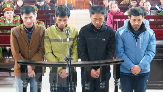144 tháng tù cho 4 bị cáo vụ sập giàn giáo công trường Formosa