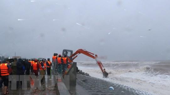 Kiểm tra công tác tác khắc phục sự cố đê biển tại Nam Định