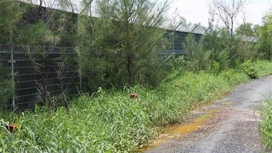 Giám sát xử lý mùi hôi ở Khu liên hợp xử lý chất thải rắn Đa Phước