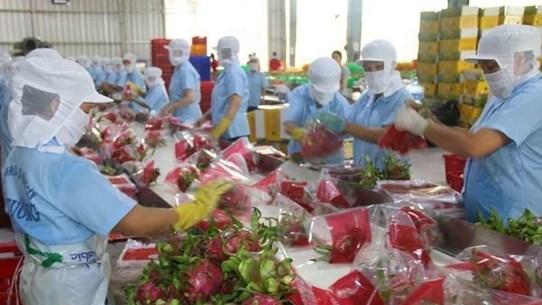 Việt Nam-Trung Quốc thúc đẩy hợp tác chế biến và thương mại nông sản