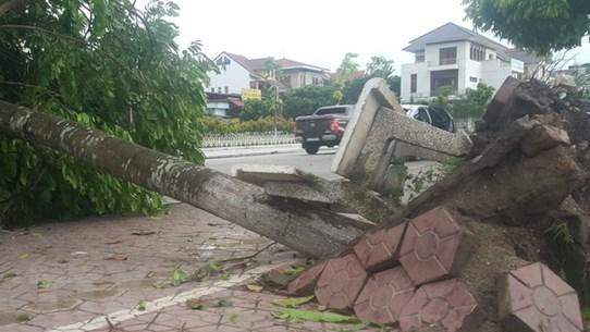Tổng thiệt hại do dông lốc ở Lào Cai ước tính trên 7 tỷ đồng