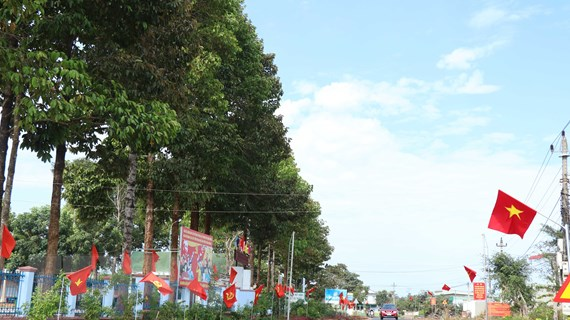 Chào mừng Đại hội XIII của Đảng: Đường cờ của niềm tin và kỳ vọng