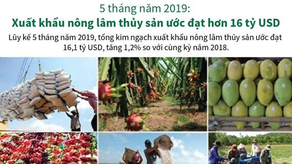 [Infographics] Xuất khẩu nông lâm thủy sản ước đạt hơn 16 tỷ USD