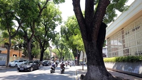 Các tỉnh miền Bắc ấm dần, nhiệt độ thấp nhất tại Hà Nội là 16 độ C