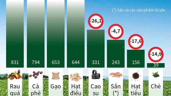 [Infographics] Kim ngạch xuất khẩu nhiều nông sản chính giảm mạnh