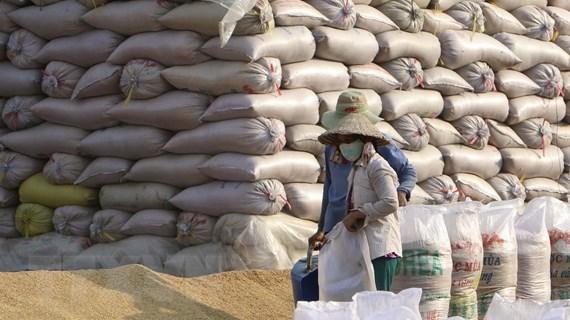 Hỗ trợ doanh nghiệp xuất khẩu nông sản vượt khó, mở rộng thị trường