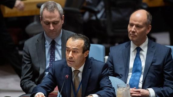 Việt Nam lên tiếng về tình hình Liban và Somalia tại cuộc họp của HĐBA