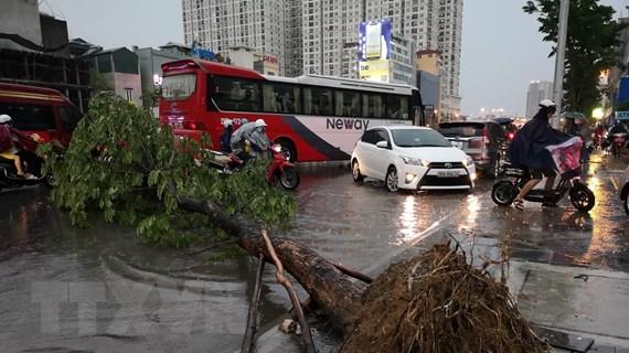 Mưa lớn đúng giờ tan tầm, Hà Nội ngập nặng, giao thông hỗn loạn