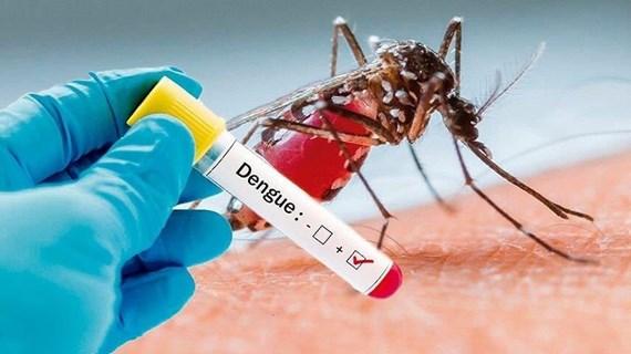 Kon Tum: Một trường hợp tử vong do sốt xuất huyết Dengue