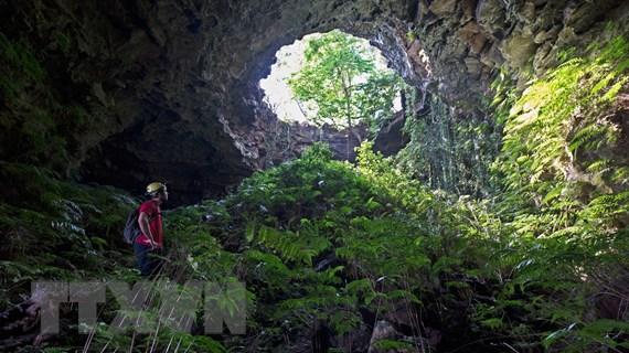 Hang động núi lửa Krông Nô: Điểm nhấn kỳ vĩ của vùng Tây Nguyên xanh
