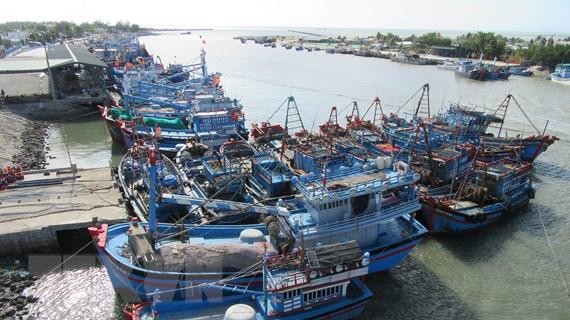 """Chuyển biến tích cực trong thực thi gỡ """"thẻ vàng"""" cho ngành thủy sản"""
