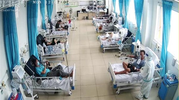 TP.HCM: Đảm bảo công tác mai táng cho bệnh nhân tử vong vì COVID-19