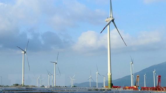 Ninh Thuận: Nhà máy điện gió lớn nhất Việt Nam đi vào hoạt động