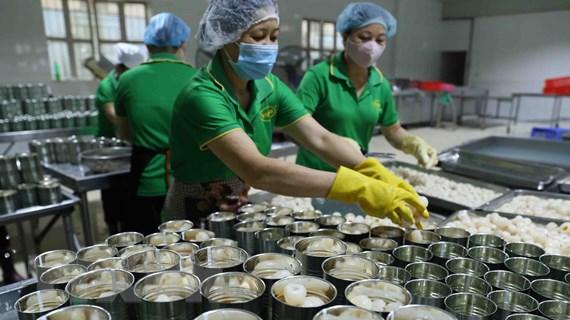 Đẩy nhanh tiến độ kiểm dịch trái cây xuất khẩu vào thị trường Hoa Kỳ