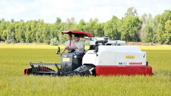 """EVFTA mở """"cánh cửa lớn"""" cho gạo Việt Nam sang thị trường EU"""